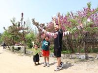 영주한국선비문화축제 3